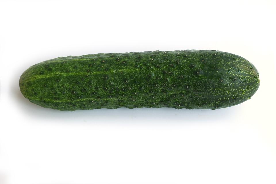 cucumiform-cucumber